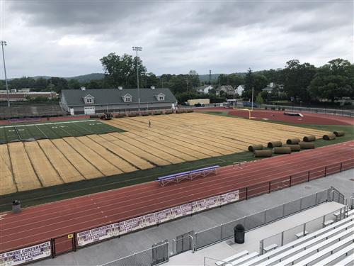 turf project